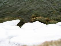lód w wodzie podczas zimy obraz royalty free