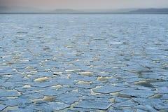 Lód w zimnym morzu Zdjęcia Royalty Free