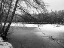 Lód, Wintertime, jezioro w Luksemburg, Europa Zdjęcia Royalty Free