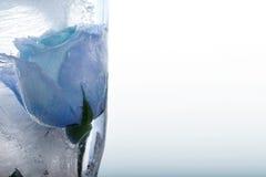 lód wzrastał Obrazy Royalty Free