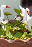 lótus brancos com a estátua dos pelicanos brancos Fotografia de Stock Royalty Free