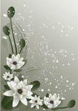Lótus de florescência ilustração royalty free