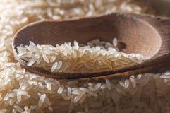 Löffel mit Reissamen lizenzfreie stockfotografie