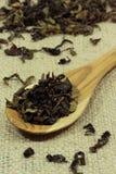 Löffel von getrockneten Teeblättern Stockbilder