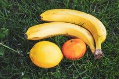 lögn för citron för fruktbanan orange på grönt gräs Arkivfoton