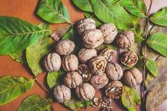 Lögn för flera valnötter på brun bakgrund Arkivbild