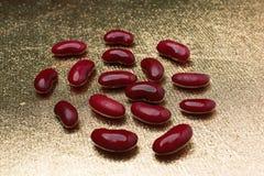 Lögn för röda bönor på en guld- bakgrund Arkivfoto
