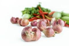 Lök med grönsaken i vit bakgrund Royaltyfri Fotografi