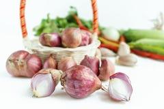 Lök med grönsaken i vit bakgrund Arkivfoto