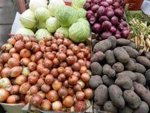 Lökar, potatisar, kål och palsternacka Royaltyfri Bild