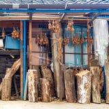 Lökar som hänger för att torka, Kanazawa, Japan royaltyfria bilder