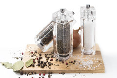 Löken exponeringsglas maler med peppar, salt och kryddor på Arkivfoton