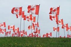 lönn för Kanada flaggaleaf Royaltyfri Bild