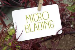 Lönn med kortet som microblading arkivbild