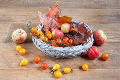 Lönnblad, äpplen och den lilla tomaten ligger på ett träskrivbord höstlivstid fortfarande Royaltyfri Foto