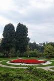 Lönnlövmodellträdgården, röda blommor, parkerar högt, Toronto Royaltyfria Foton