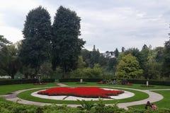 Lönnlövmodellträdgården, röda blommor, parkerar högt, Toronto Royaltyfri Bild