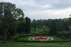 Lönnlövmodellträdgården, röda blommor, parkerar högt, Toronto Royaltyfri Fotografi