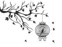 Lönnträd som faller med fågelbur- och fågelbakgrund royaltyfri foto