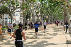 Löpare för övning för Triathlontriathletesport sunda Royaltyfri Fotografi