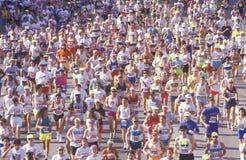 Löpare på mållinjen som gratuleras, Los Angeles maraton, Los Angeles, CA Arkivfoto