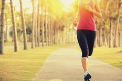 Löpareidrottsman nenspring på tropiskt parkerar jogga genomkörare för kvinnakonditionsoluppgång royaltyfri foto