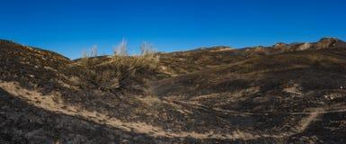 Löpeld brända Kalifornien kullar Royaltyfri Foto