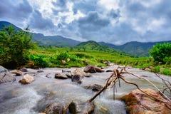 Lös bäck till och med den terrasserade risfält- och bergsikten Fotografering för Bildbyråer