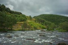 Lös flod i nationalpark arkivbilder
