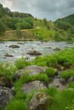 Lös flod i nationalpark, arkivfoto