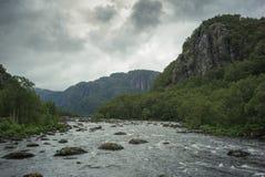 Lös flod i nationalpark royaltyfri foto