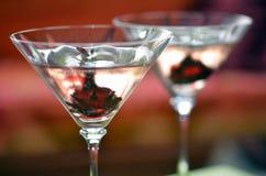 Lös hibiskus i mousserande vin Fotografering för Bildbyråer