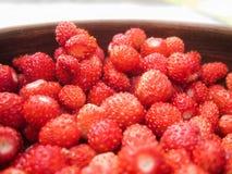 Lös jordgubbe i en lergodshandfat royaltyfria bilder