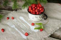 Lös jordgubbe i kopp Arkivfoto