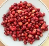 Lös jordgubbe på en platta Arkivbilder