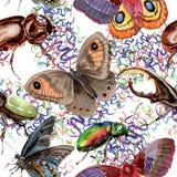 Lös krypmodell för exotiska skalbaggar i en vattenfärgstil Royaltyfri Bild