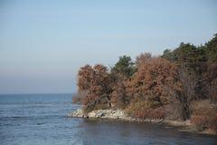Lös kust av sjön Fotografering för Bildbyråer