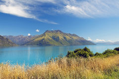 Lös natur av Nya Zeeland Arkivfoton
