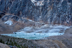 Lös natur i Rocky Mountains, Angel Glacier Jasper National Park Arkivfoton