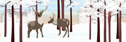 Lös ren två i vinterskogen stock illustrationer