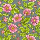 Lös rosa blommamodell vektor illustrationer