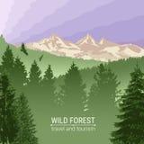 Lös skogsoluppgång, berg, sörjer och granen Eagles och fåglar i flykten Turism och lopp Campa Horisontlinjen stock illustrationer