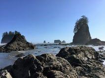 Lös Stillahavskusten Royaltyfria Bilder