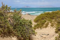 Lös strand i Caleta de Famara, Lanzarote ö, Spanien arkivfoton