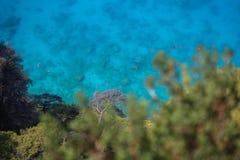 Lös strand med klart blått vatten Fotografering för Bildbyråer