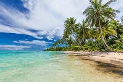 Lös strand med palmträd på södra sida av Upolu, Samoa öar Arkivfoton