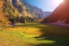 Lös Susica kanjon för solnedgång Fotografering för Bildbyråer