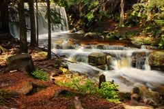 Lös vattenfall i skogen, vatten, ström, stenar, reflexioner, natur Arkivfoto