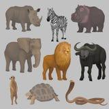 Lösa afrikanska djur ställde in, flodhästen, elefanten, giraffet, noshörningen, sköldpaddan, buffeln, sebran, lejonet, ormvektor Arkivbilder