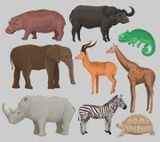 Lösa afrikanska djur ställde in, flodhästen, flodhästen, kameleonten, elefanten, antilop, giraffet, noshörningen, sköldpadda Fotografering för Bildbyråer